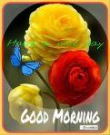 GOOD MORNING-1